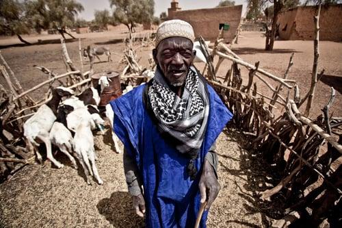 Abdullah Ali es pastor de la comunidad de Ari Hara, colabora dando en préstamo vacas a la cooperativa.